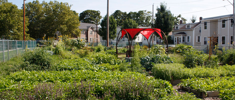 Manton Avenue Community Garden